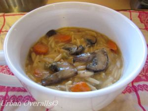 orzo and vegetable soup