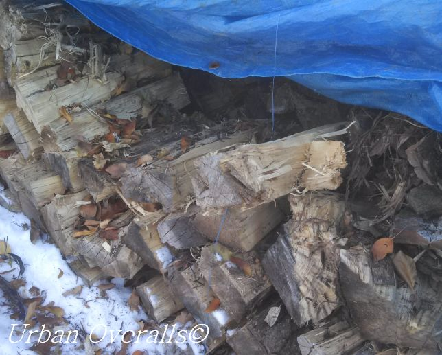 stacked wood under a tarp