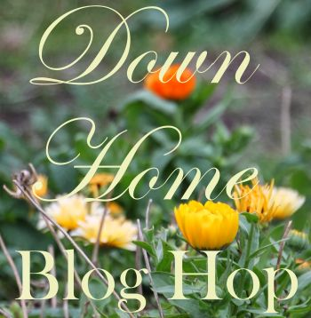 Down Home Blog Hop