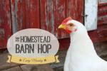 Homestead Barn Hop-