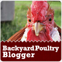 Backyard Poultry