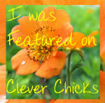 Clever Chicks Featured
