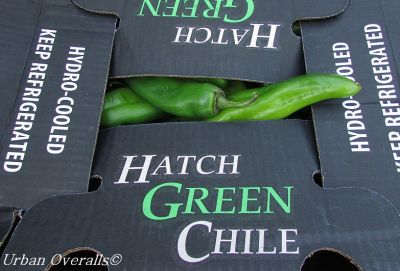 case of Hatch Green Chiles