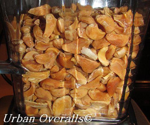 dried garlic cloves in blender