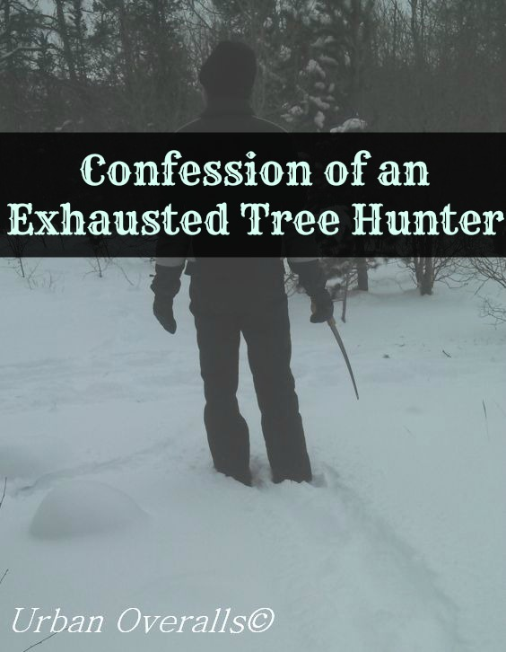 exhausted Christmas tree hunter