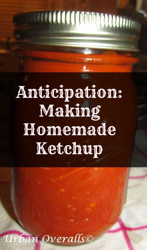 homemade-tomato-ketchup-cr-pm