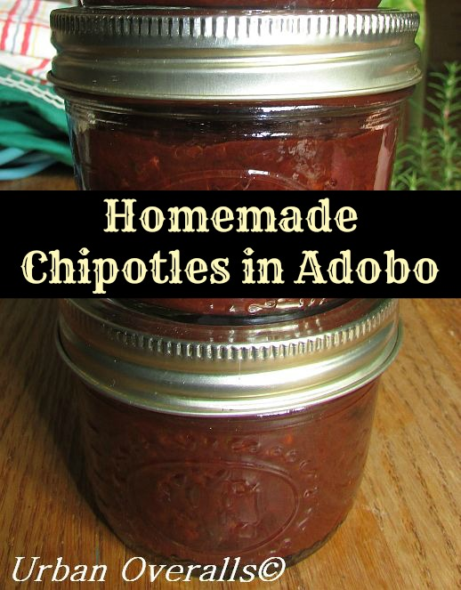 homemade chipotles in adobo