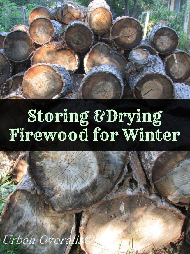 Cut, cured & stacked firewood